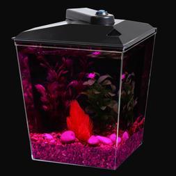 1-Gallon Aquarium with LED Light & Filter Betta Fish Tank Co
