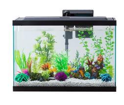 20- Gallon Fish Tank (Aqua Culture Aquarium Starter Kit With
