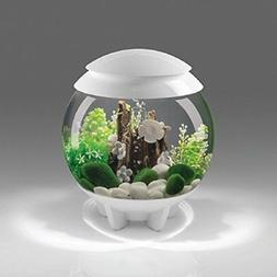 biOrb 48475 Halo 30 Aquarium with MCR Light - 8 Gallon, Whit