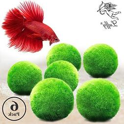 Luffy 6 Giant Marimo Moss Balls  : Biological, Natural, Chem