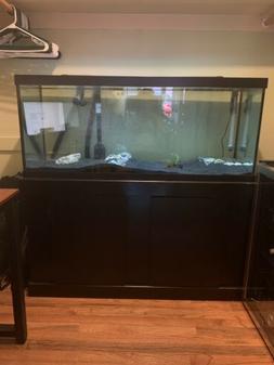 75 gallon aquarium fish tank With Filter