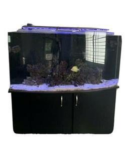 A Complete 125 Gallon Salt Water Aquarium Fish Tank With Bas