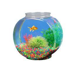 Koller/api Fish Tank 1 Gallon Drum Plastic. **Free Shipping*
