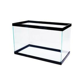 aquarium 10 gallon fish tank glass sturdy