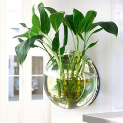 Aquarium Hanging Fish Transparent Vases Glass Fishbowl Tanks