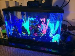 GloFish Aquarium Kit 5 gallon Fish Tank - 5x Tetra Whisper F