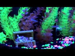 Aquarium Starter Kit 1.5 Gallon Fish Tank With Hood Led Ligh