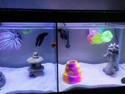 Aqueon 10 Gallon Fish Tank Divider