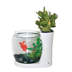 Elive Betta Fish Bowl / Betta Fish Tank with Planter, Small