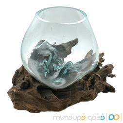 Betta Fish Bowl Unique Molten Glass on Teak Driftwood M74 Fa