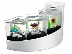 Betta Fish White Tank With Divider Frosted Tanks Filter Wate