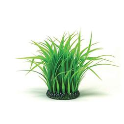 BiOrb BiUbe Grass Ring Decoration Medium