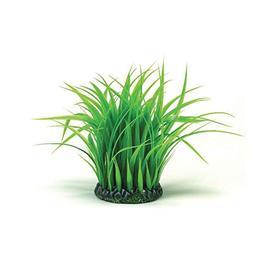 BiOrb BiUbe Grass Ring Decoration Medium