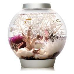 classic 4 gallon aquarium