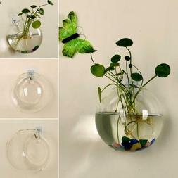 Creative Acrylic Wall Mounted Fish Tank Bowl Bubble Aquarium
