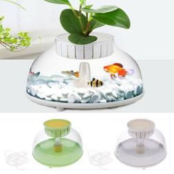 Creative Fish Aquariums Fish Tank Goldfish Pot Bowl Aqua Tan