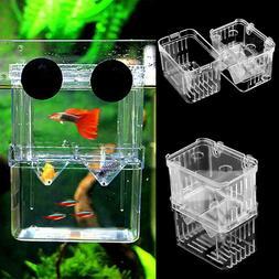 Fish Breeding Isolated Box Hatching Incubator Fish Aquarium