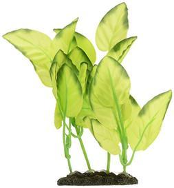 foreground silk plant