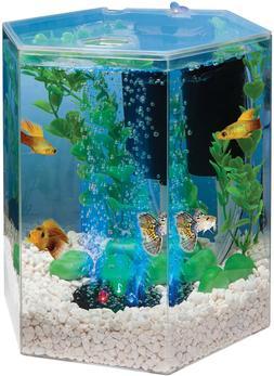 ~Hexagon Aquarium Tetra Tank LED Bubbler Kit Gallon Gold Fis