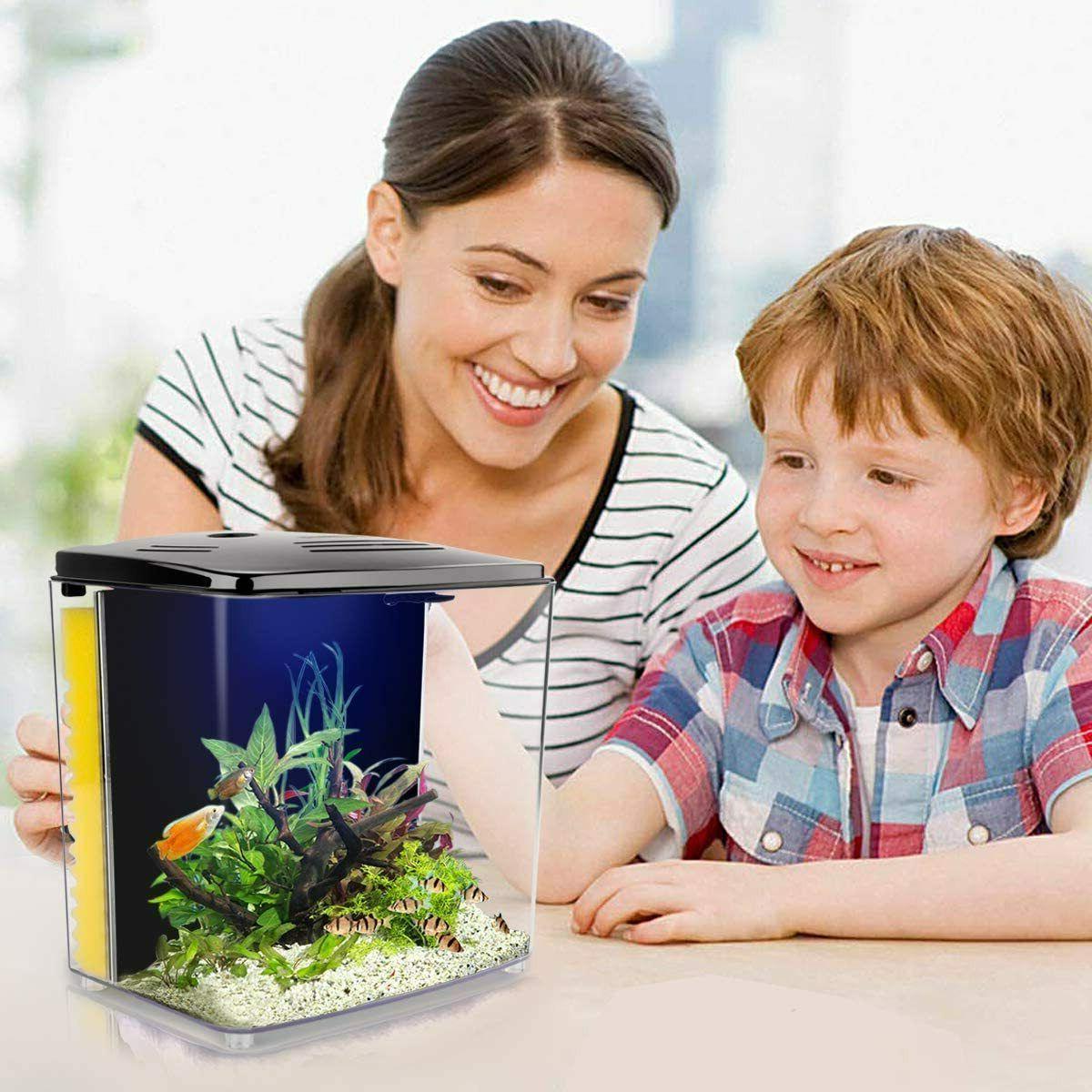 1.4 Gallon Aquarium Starter Kits, with Filter