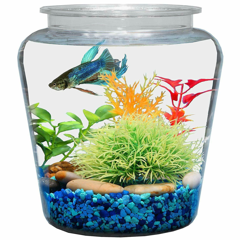 1 gallon fish bowl