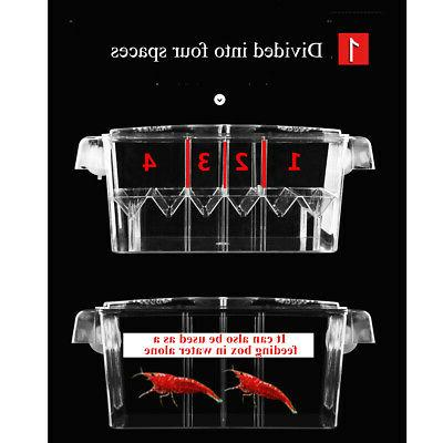 10.6Acrylic Tank Breeding Isolation Box Aquarium Hatchery Incubator