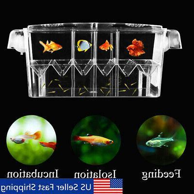 10 6acrylic fish tank breeder breeding isolation