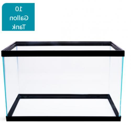 10 Gallon Aquarium Pet Fishes Aqua Home