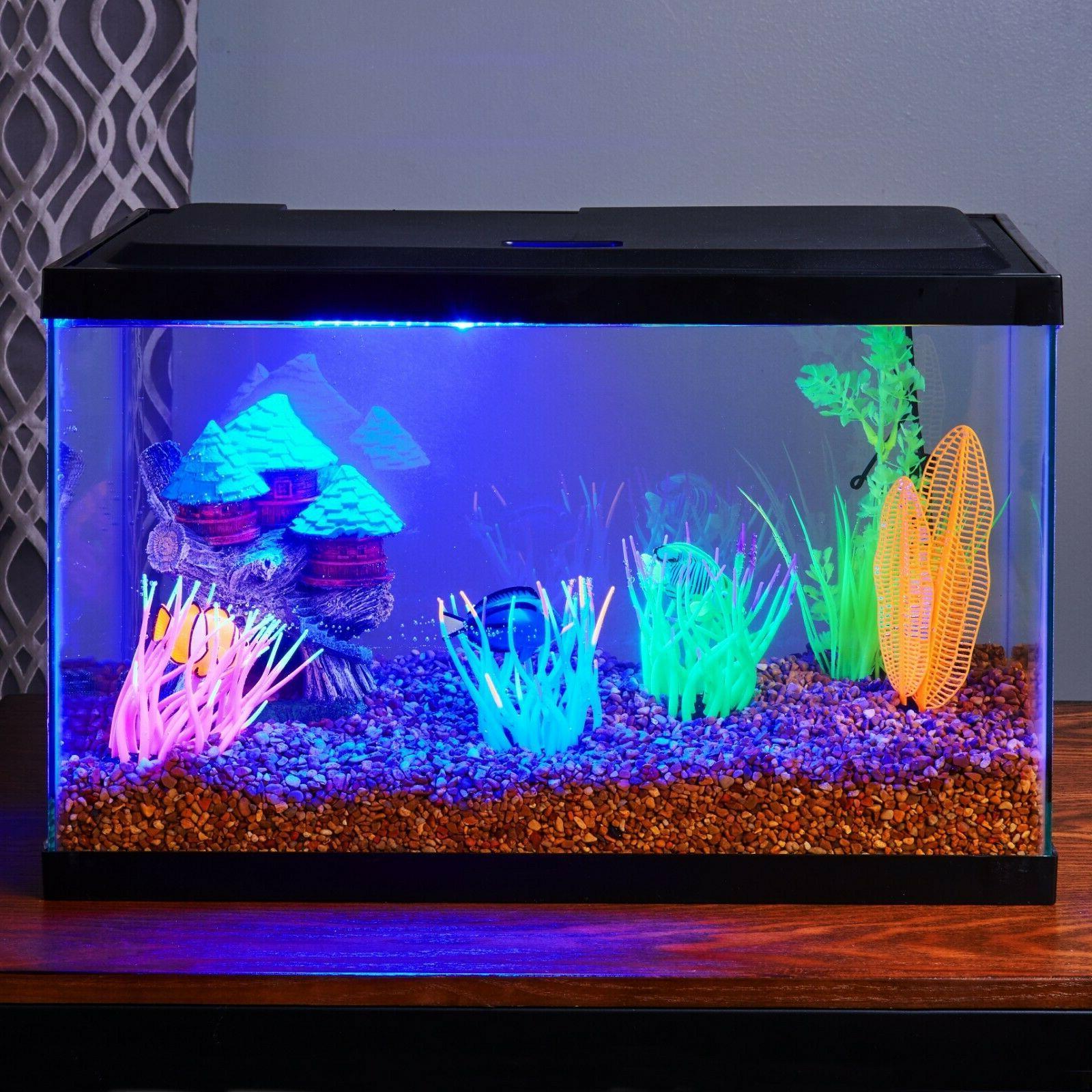10 Gallon Aquarium Clear Pet Reptiles Aqua
