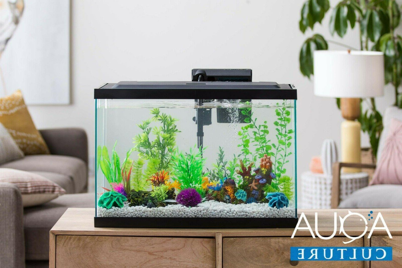 "Aqua Culture Glass Aquarium x 13.5""H"