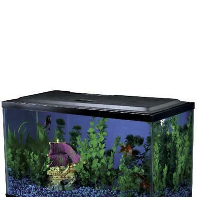 Hood Culture Tank Water Freshwater