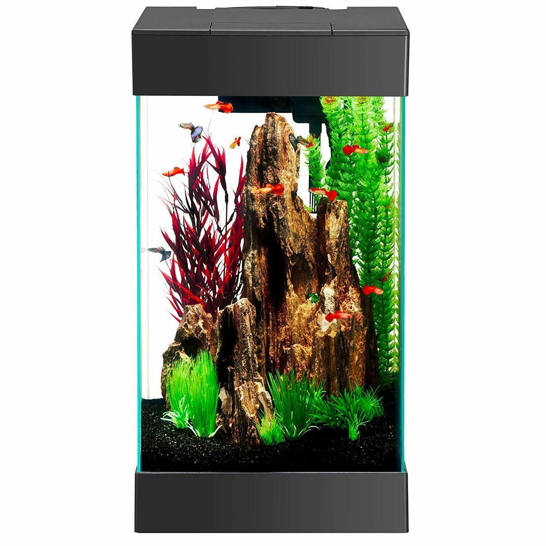 Aqueon Gallon Aquarium Kit