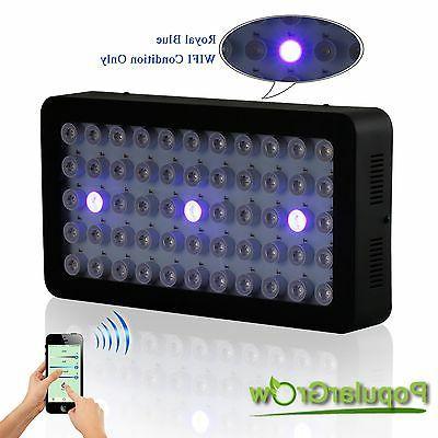 165W WIFI Light Dimmable Lamp