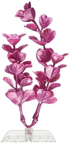 GloFish 19264 Moneywort Plant, Medium, Pink