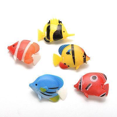 Fish for Ornament Fish