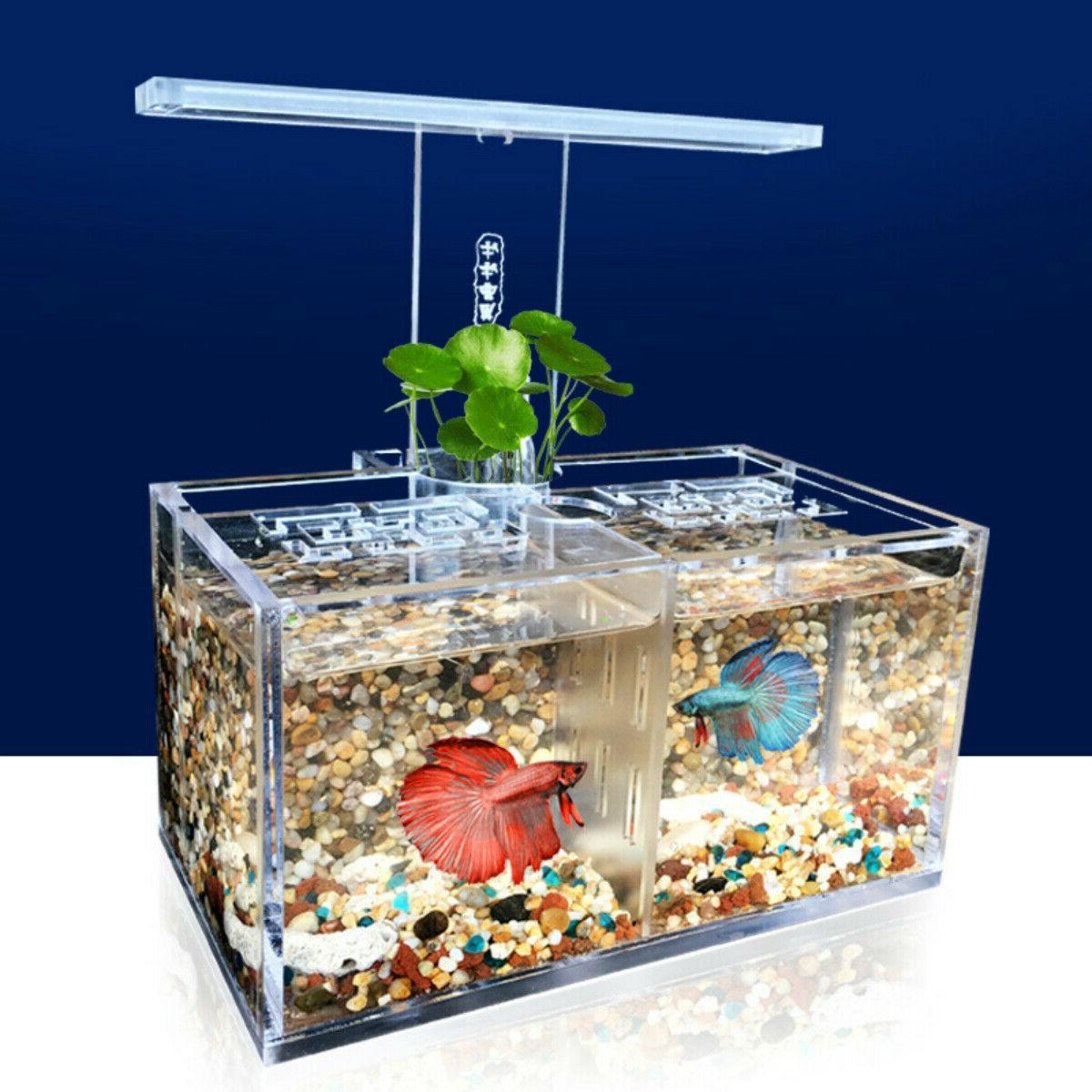 2 grids acrylic aquarium baby betta fish