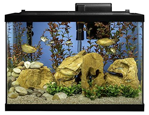Tetra Aquarium Fish Kit,
