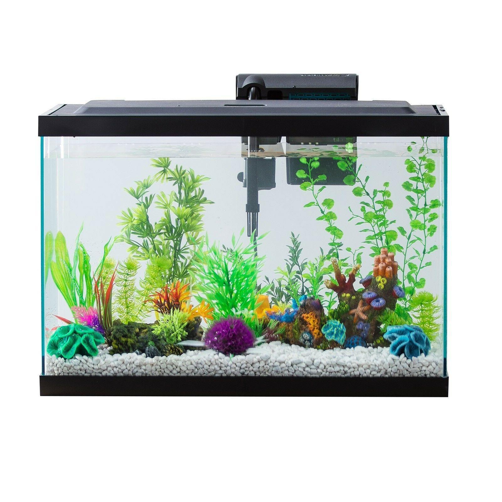 20 gallon fish tank aquarium starter kit