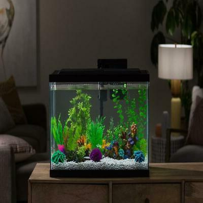 Aqua Culture 29-Gallon Starter With LED, Pet