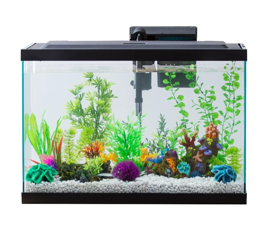 29-Gallon Fish Aquarium Pack with Tank Filter