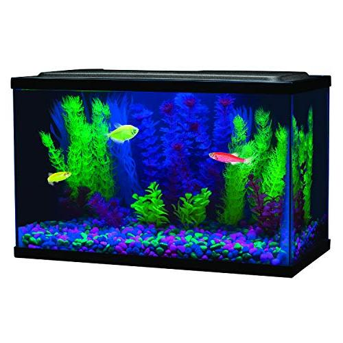 GloFish 29014 Light,