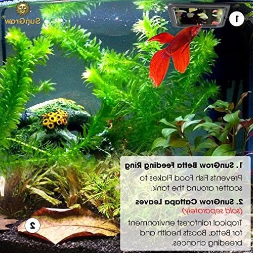 """4"""" Floating Food - Reduces Water for Flakes & Floating Fish for and Other Fish"""