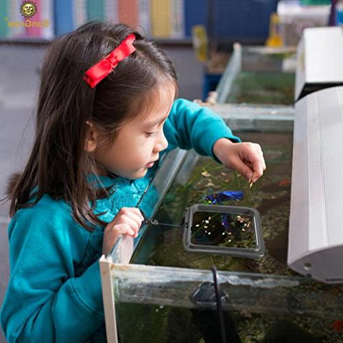 """4"""" x 4"""" Square Feeding Ring Floating Food Square Reduces Waste Water Quality - Suitable for Floating Foods for Guppy, and Other Smaller Fish"""