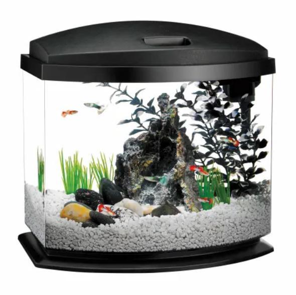 5 gallon minibow led desktop fish aquarium