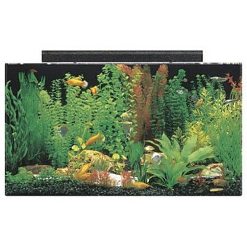 "SeaClear 50 gal Acrylic Aquarium Combo Set, 36 by 15 by 20"","