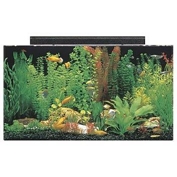 """SeaClear gal Aquarium by 15 20"""", Black"""