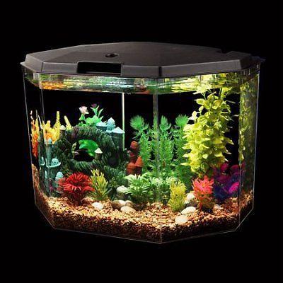 API Semi-Hex Aquarium with LED Internal Filter,