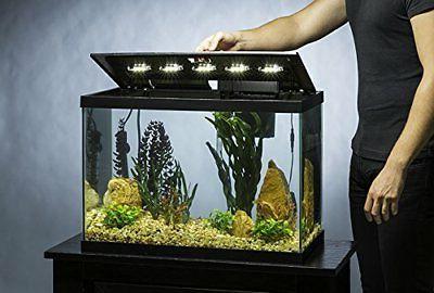 Tetra Aquarium 20 Gallon Fish Includes LED