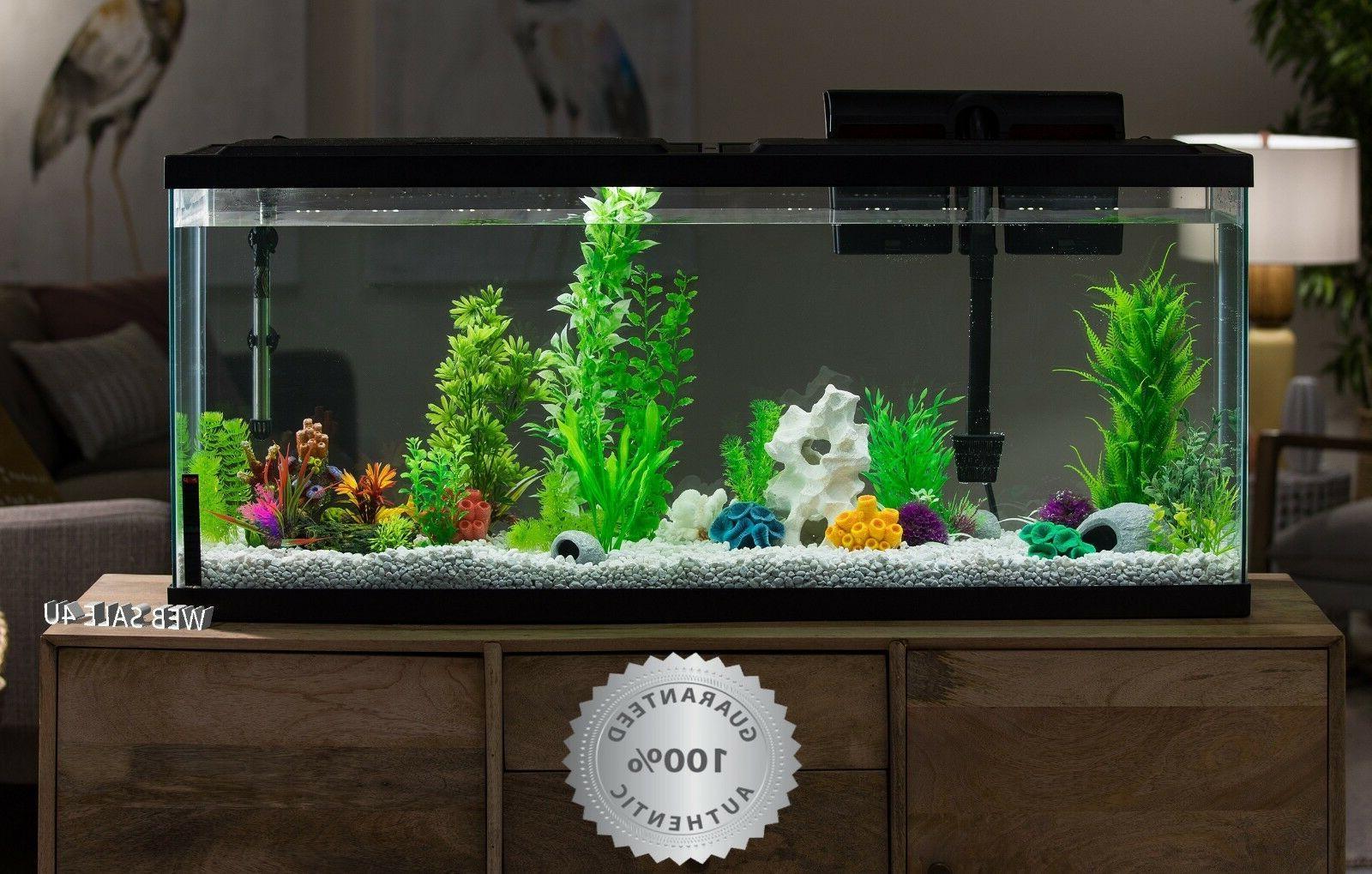 aquarium 55 gallon large fish tank starter