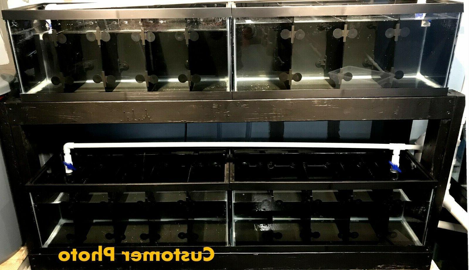 Aquarium Divider tank rack